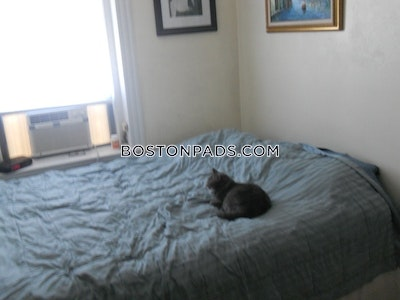North End Apartment for rent 1 Bedroom 1 Bath Boston - $2,080