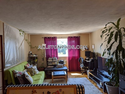 Allston Apartment for rent 2 Bedrooms 1 Bath Boston - $2,050