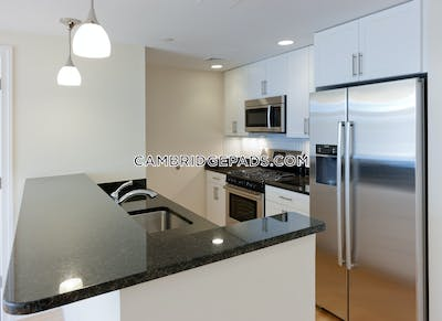 Cambridge Apartment for rent 2 Bedrooms 2 Baths  Davis Square - $4,000