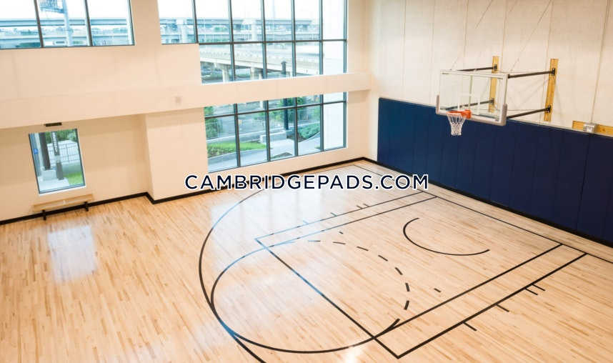 Apartments for rent in roslindale ma studio 1 bath for Indoor half court basketball cost